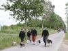 hondenwandelzoektocht-021